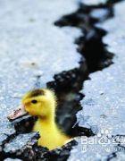怎样预知地震前兆