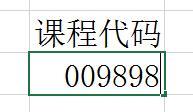 excel/EXCEL表格中怎样把零0显示出来