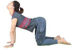 健康养生,瑜伽5部曲