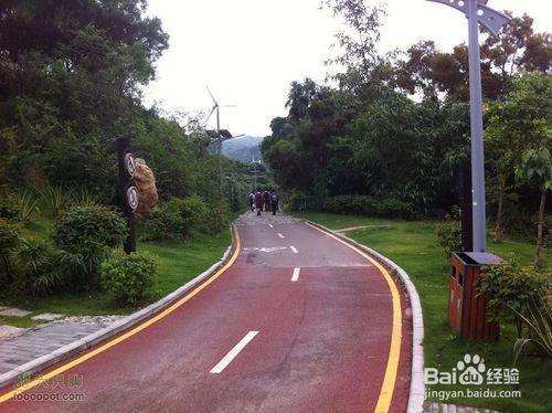 深圳户外单车骑行路线选择?